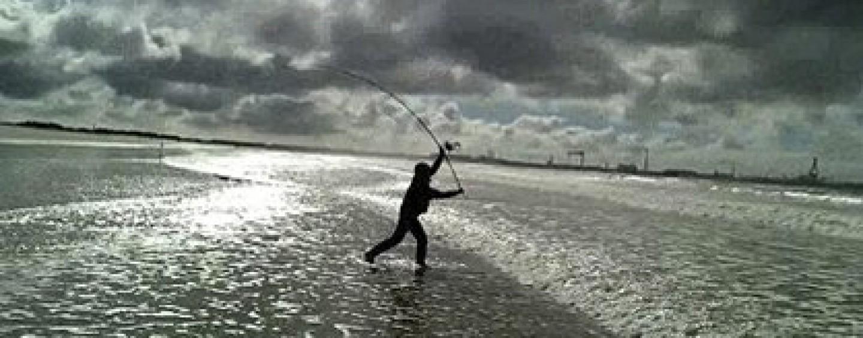 Pesca surfcasting en invierno es duro pero con buenas piezas