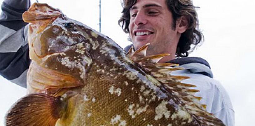 Pesca curricán costero, curri, currica
