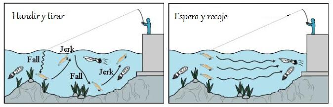 pesca del calamar