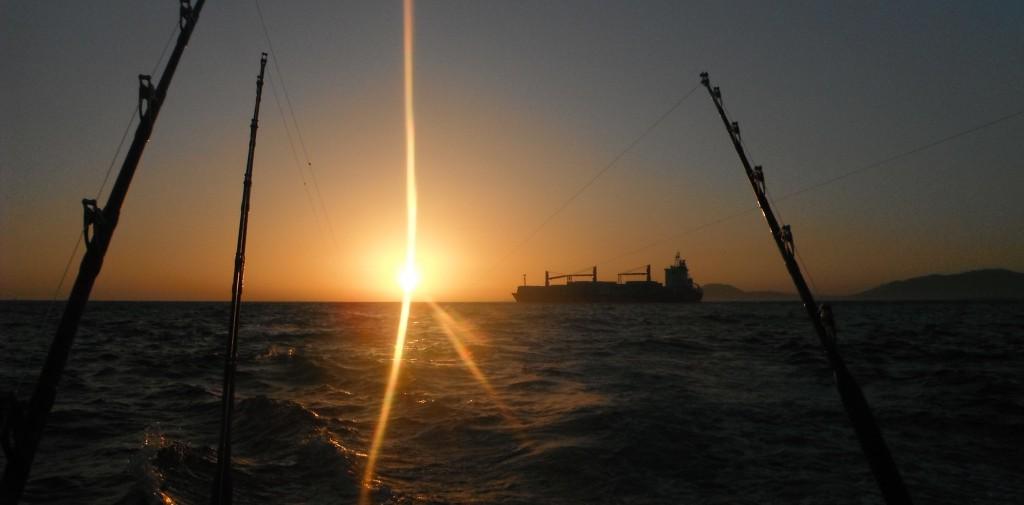 sonda de pesca para jigging