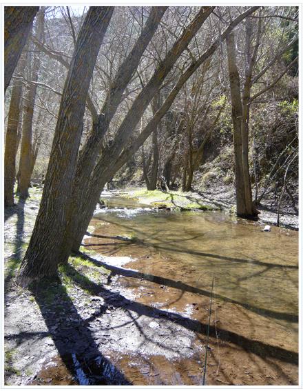 Coto de Aguas Blancas en Quéntar