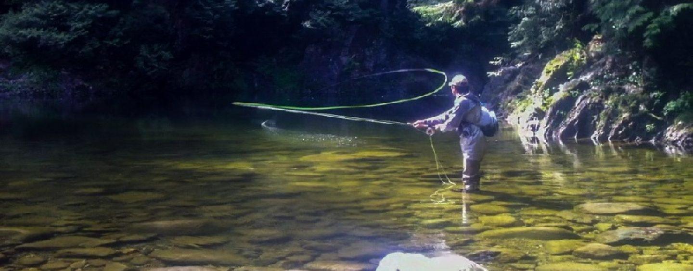 Pezcador al día, principales noticias de pesca (noviembre 2016, 2)