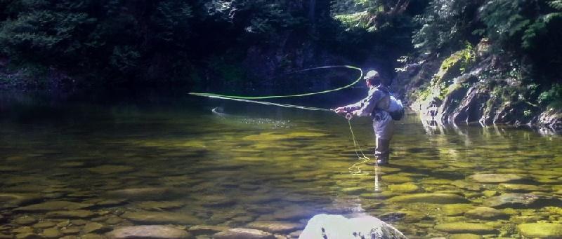 Pescar con mosca