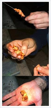 cebos para la pesca del sargo