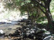 Pescando en el coto del río Genillos Sierra Nevada