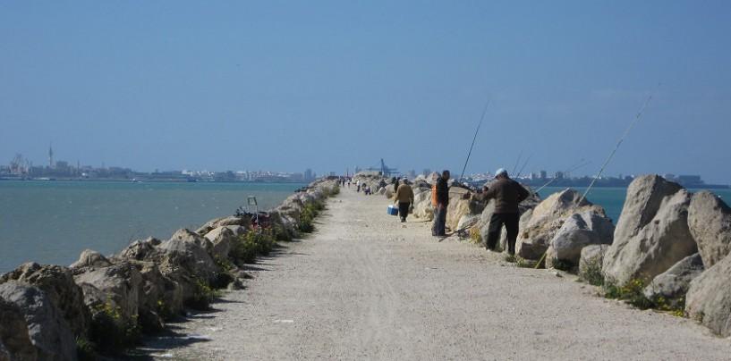 5 estrategias para pescar en espigones con éxito