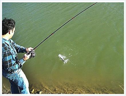 pesca de la esquiva trucha veraniega