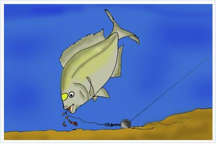 Pesca selectiva para doradas