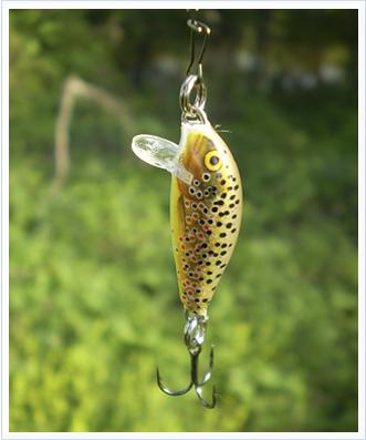 Señuelos de pesca de la esquiva trucha veraniega