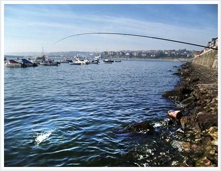 acción de pesca caña Okuma Bolognese