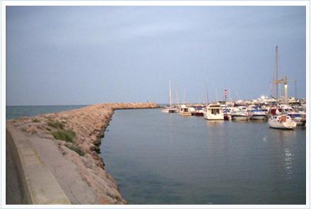 Muelle en donde poder pescar anguilas