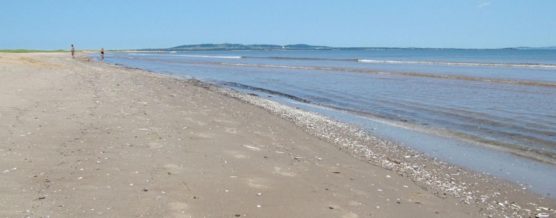 7 consejos para la pesca surfcasting en arenales