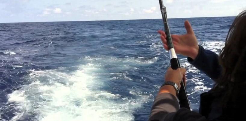 Embarcados tras la pesca del bonito, diversión a tutiplén