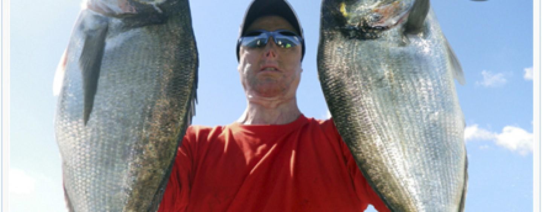 IV Encuentro digital con Walter Tanero sobre la pesca de doradas XXL