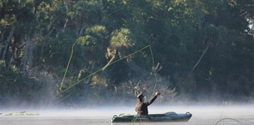 Pesca de lubina desde kayak de pesca, ¿misión imposible?