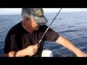 Vídeo de pesca ¡marchando una de calamares!