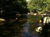 """Vídeo """"Trutta"""", la búsqueda de truchas salvajes en los Pirineos"""