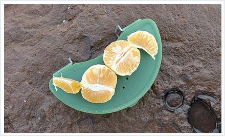 Naranja y mandarina, los mejores cebos para la salpa