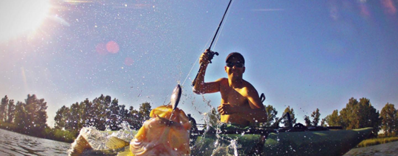 Pezcador al día, principales noticias de pesca (Mayo 2017, 4)