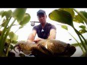 Vídeo pescando a mosca al otro lado del charco
