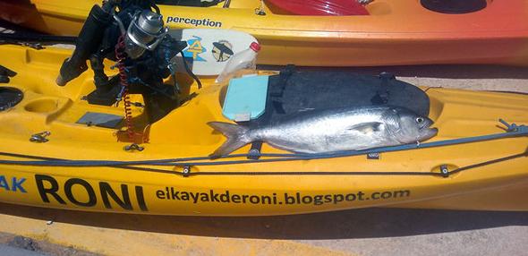 pescar anjovas desde un kayak de pesca