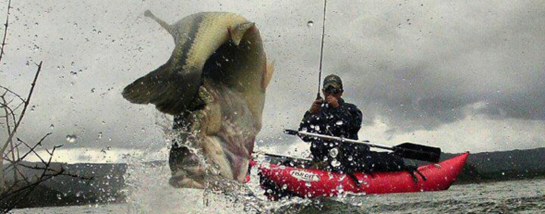 Las fotos de pesca de la semana