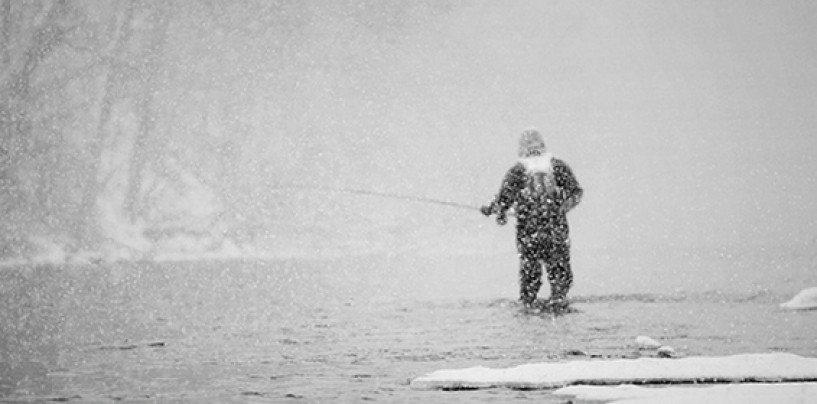 Pezcador al día, principales noticias de pesca (enero de 2018, 4)