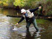 5 accesorios básicos para la pesca a mosca