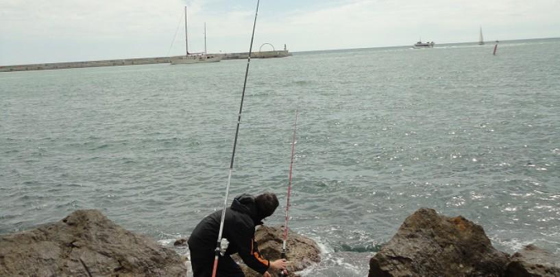 Las claves para la pesca a fondo de la lubina en el Mediterráneo