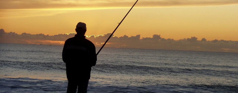 Pezcador al día, principales noticias de pesca (septiembre 2016, 2)
