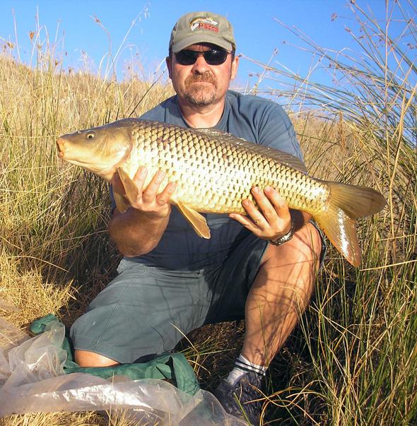 Carpa capturada por Josan Illescas a fondo. Pescar carpas a fondo.
