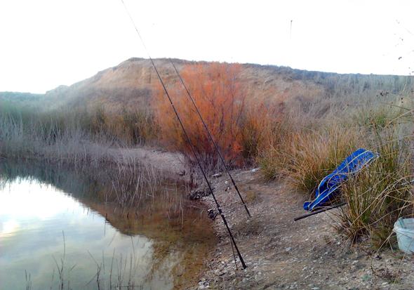 Cañas para pescar carpas a fondo