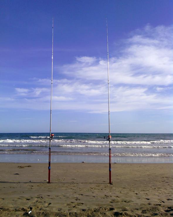 Cañas de surfcasting