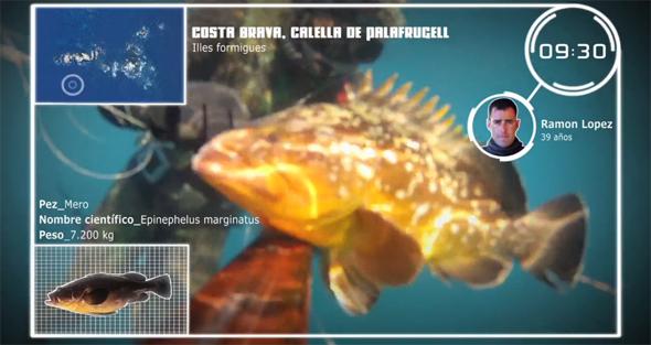 """Fotograma del vídeo de pesca """"Engañando meros en la Costa Brava"""""""