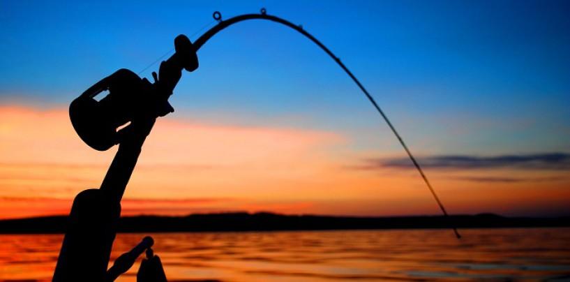 """¿Cómo iniciarse en la pesca con profundizador o """"Drownriger""""? ¿Por qué se pesca más con profundizador?"""