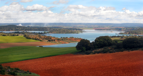 Pantano de Alarcón, un lugar perfecto para pescar carpas al coup