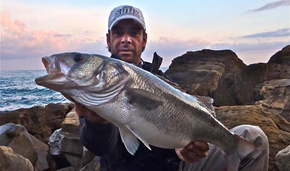Lubina capturada por Rubén Benítez, protagonista de nuestro vídeo de pesca de hoy.