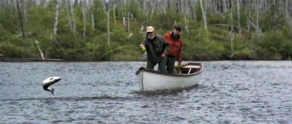 La pesca en que coger la tenca