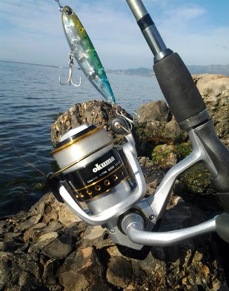 Pesca de la lubina con artificiales