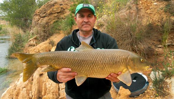 Barbo de 6kg capturado por Josan Illescas, su récord personal.