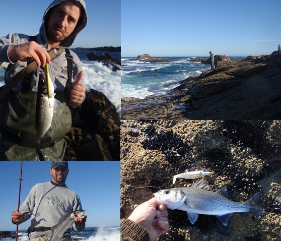 Quedada de pesca