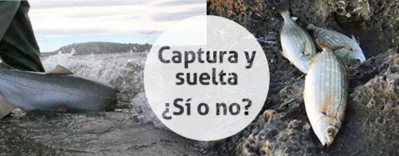 A debate: captura y suelta, ¿sí o no?, deja tu opinión.