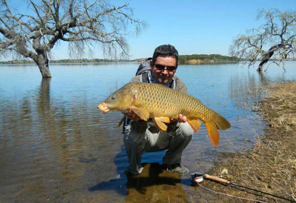 César Tardío y carpas como esta son los protagonistas del vídeo de pesca de hoy.