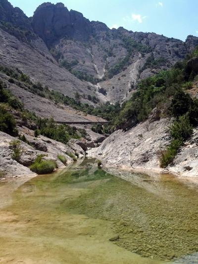 pescar en verano: río de alta montaña