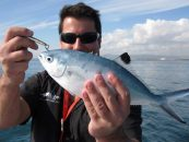 5 especies que pescar en verano
