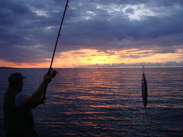 Pescar en verano