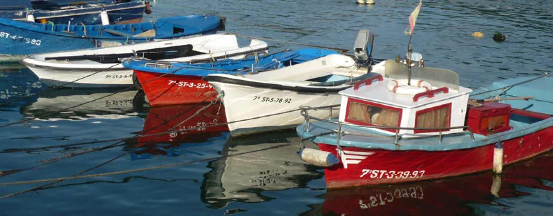 Pesca portuaria: razones para una sinrazón