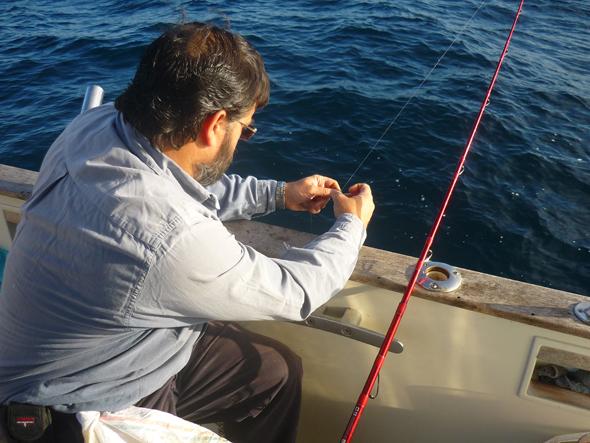 pescando julia o doncella