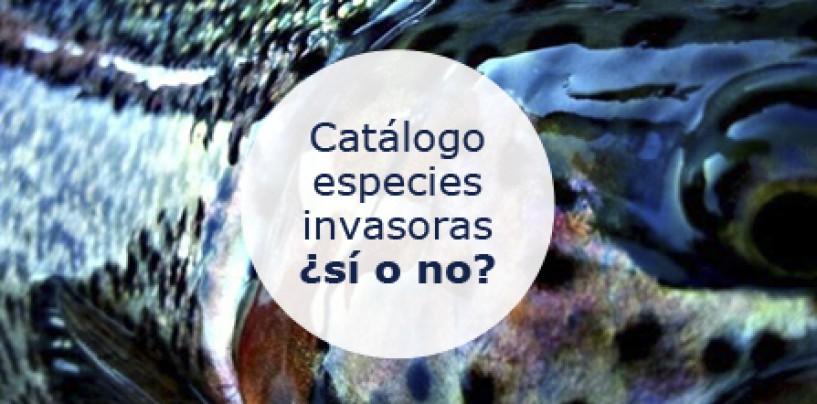 A debate: especies invasoras, ¿sí o no? Deja tu opinión.