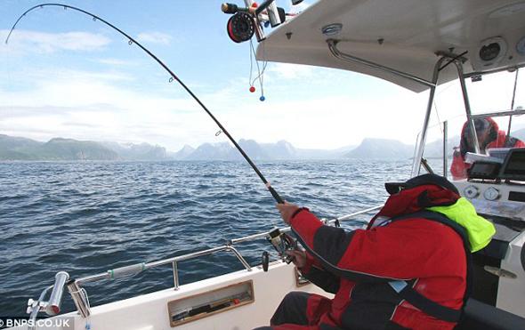Pesca del fletán o halibut